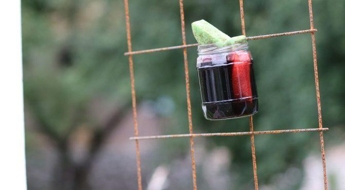 Perhosbaari puutarhaan